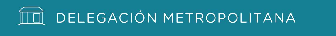 delegaciones-metropolinana